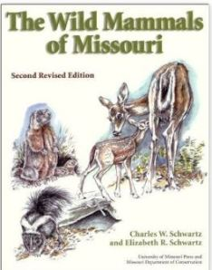 The Wild Mammals of Missouri